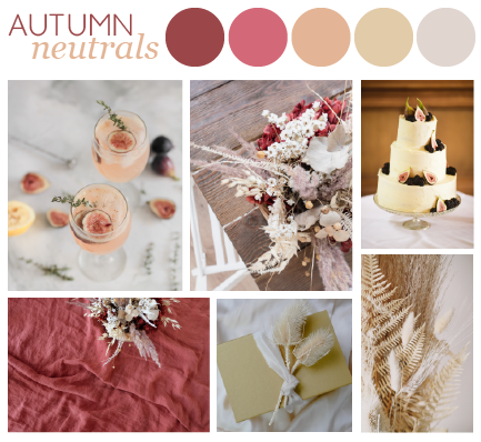 A moodboard for ideas for a neutral colour palette for autumn. Featuring six images of pale pink cocktails, salmon pink tablecloth, two pictures of dried flower bouquets, cake decorated with figs and a cream envelope wrapped in ribbon.