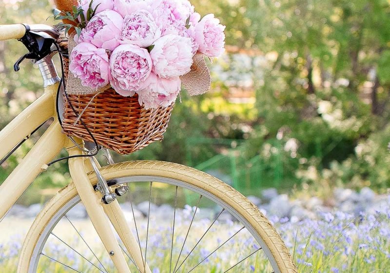 A yellow bike with a basket full of pink peonies. A great eco-friendly wedding transport idea!